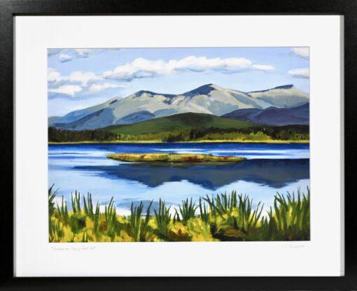 summer on cherry pond framed print