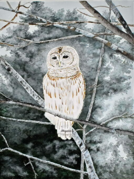 Acrylic on canvas of a barred owl sitting in a winter tree